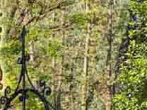 Pozzi Decorativi Da Giardino : Pozzi in cemento pozzi ornamentali pozzi da esterno pozzi da