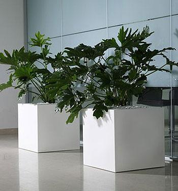 Vaso kube in resina vasi in resina e in plastica da esterno e da interno vendita - Vaso da interno ...